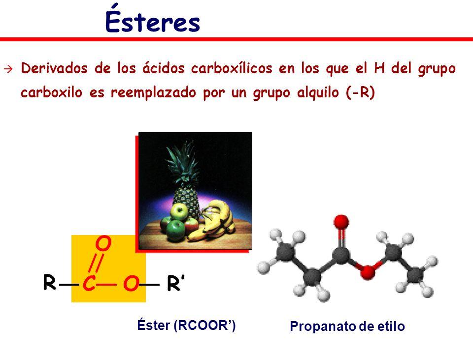 ÉsteresDerivados de los ácidos carboxílicos en los que el H del grupo carboxilo es reemplazado por un grupo alquilo (-R)