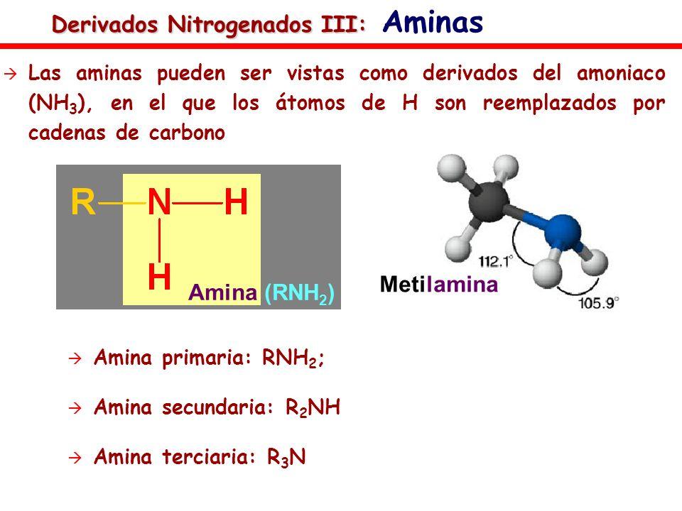 Derivados Nitrogenados III: Aminas
