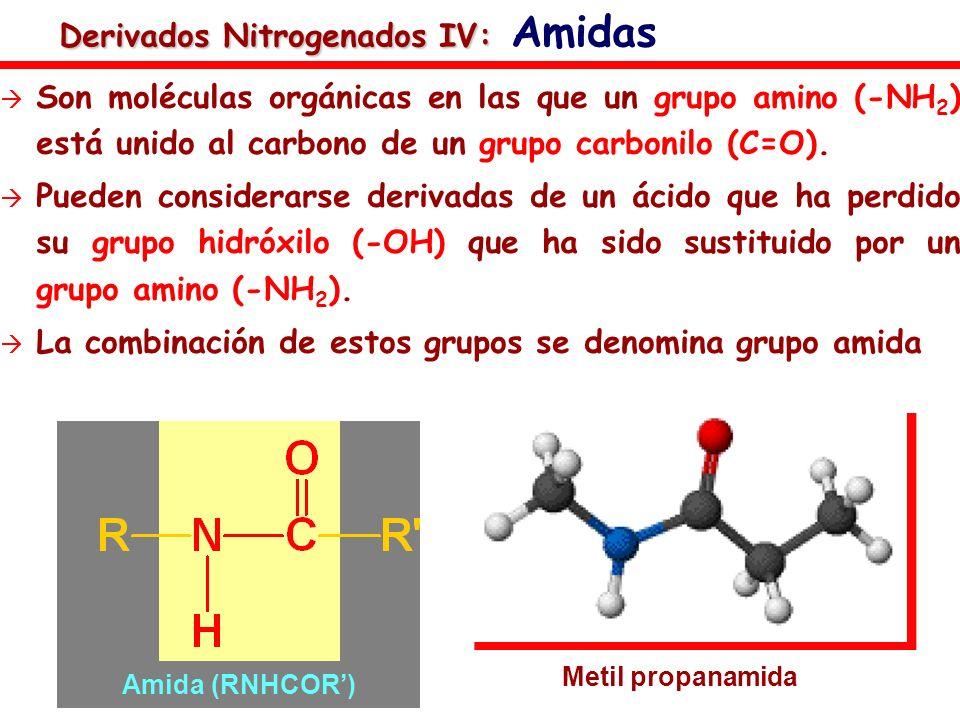 Derivados Nitrogenados IV: Amidas