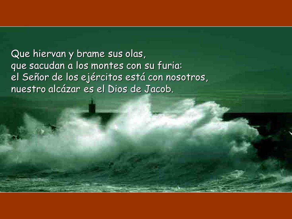 Que hiervan y brame sus olas, que sacudan a los montes con su furia: el Señor de los ejércitos está con nosotros, nuestro alcázar es el Dios de Jacob.