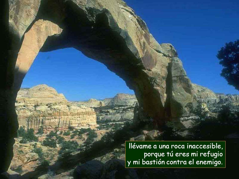 llévame a una roca inaccesible,
