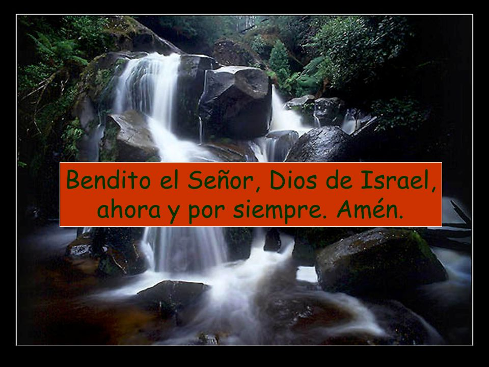 Bendito el Señor, Dios de Israel, ahora y por siempre. Amén.