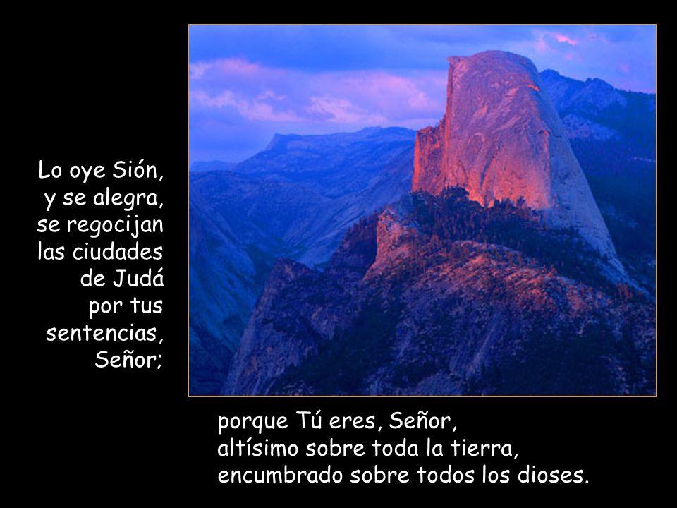 Lo oye Sión, y se alegra, se regocijan las ciudades de Judá. por tus sentencias, Señor; porque Tú eres, Señor,