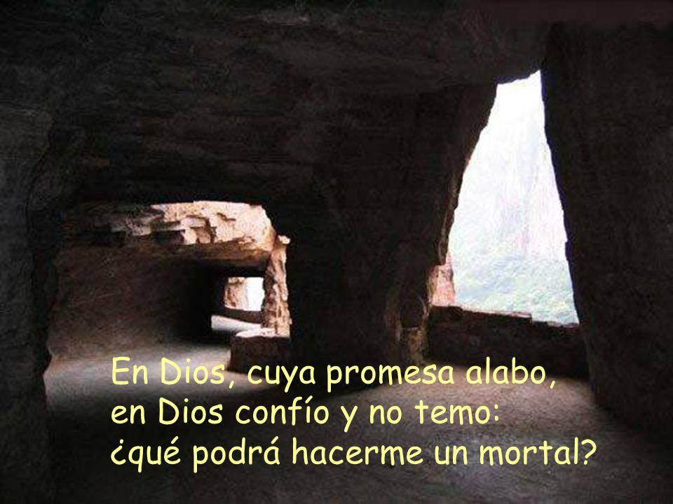 En Dios, cuya promesa alabo,