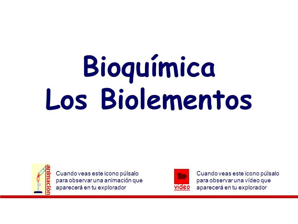 Bioquímica Los Biolementos