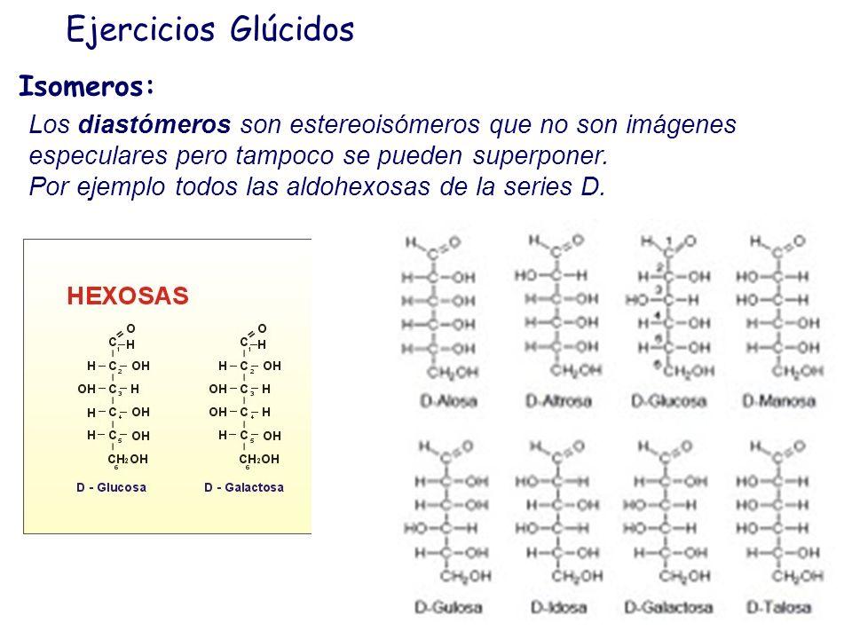 Ejercicios Glúcidos Isomeros: