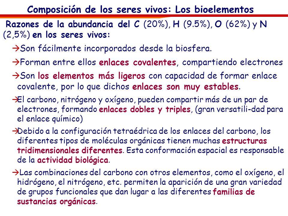 Composición de los seres vivos: Los bioelementos