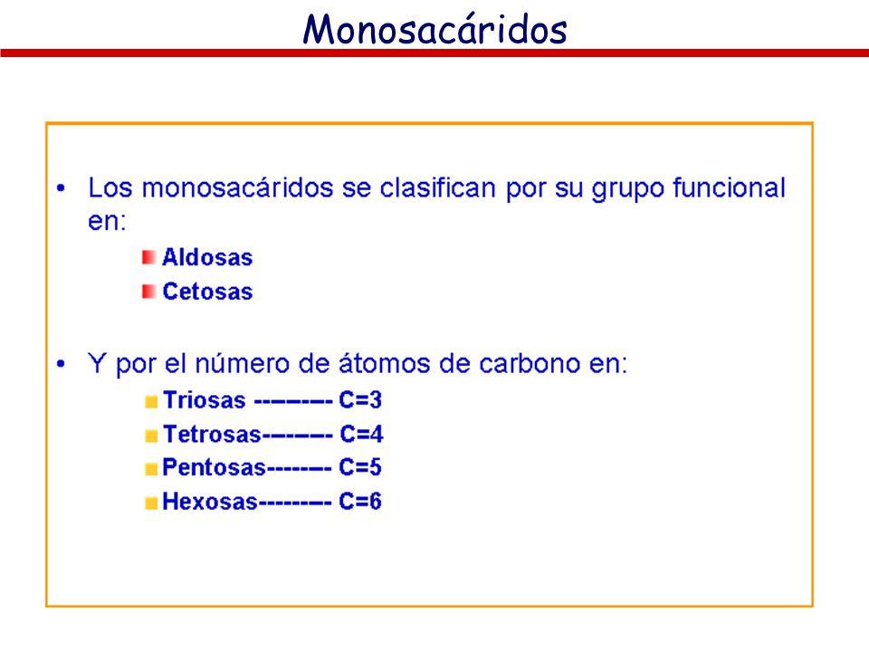 Monosacáridos LOS MONOSACÁRIDOS: CONCEPTO Y NATURALEZA QUÍMICA