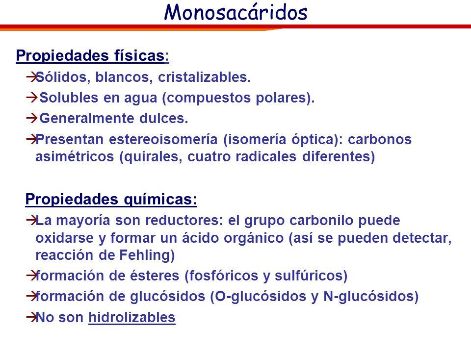 Monosacáridos Propiedades físicas: Propiedades químicas: