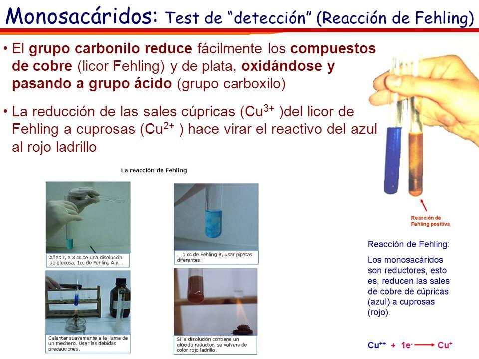 Monosacáridos: Test de detección (Reacción de Fehling)
