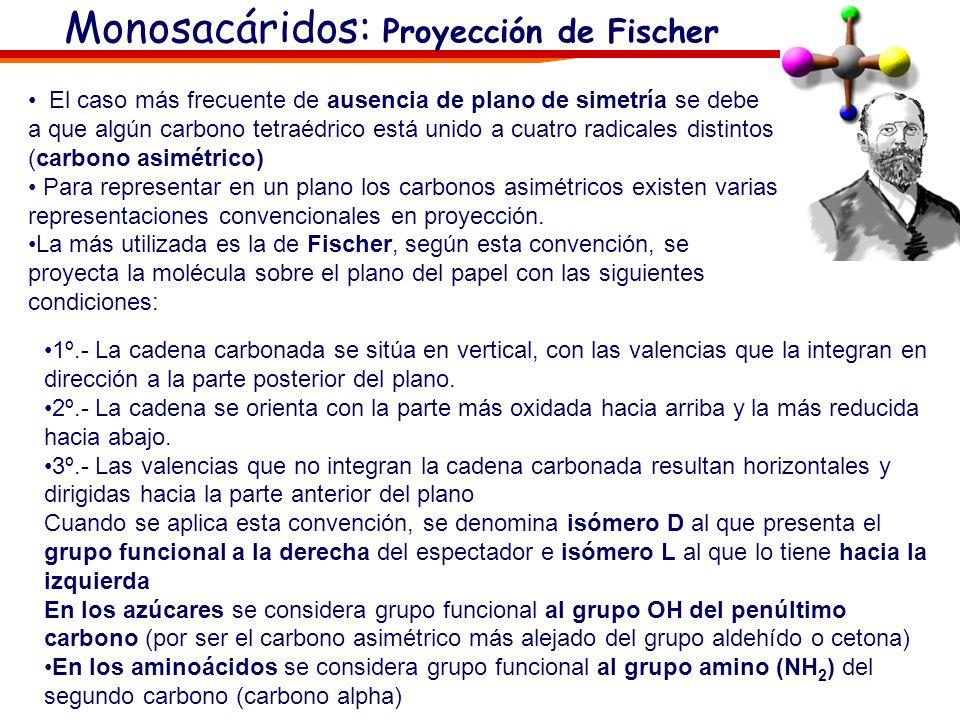Monosacáridos: Proyección de Fischer