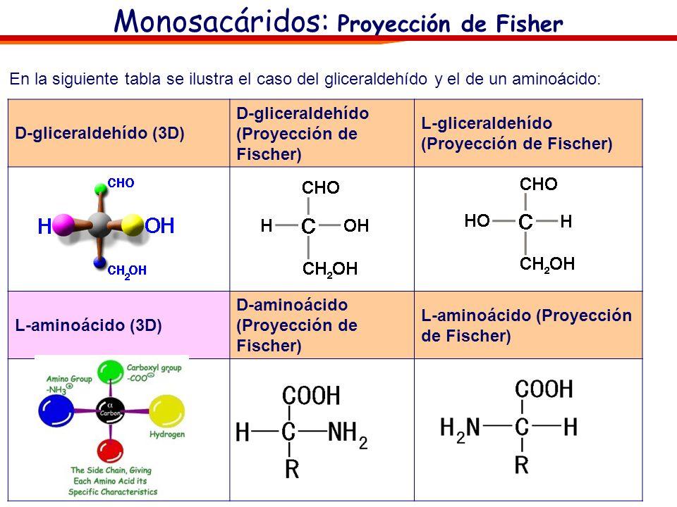 Monosacáridos: Proyección de Fisher