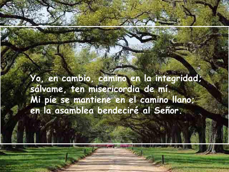 Yo, en cambio, camino en la integridad; sálvame, ten misericordia de mí.