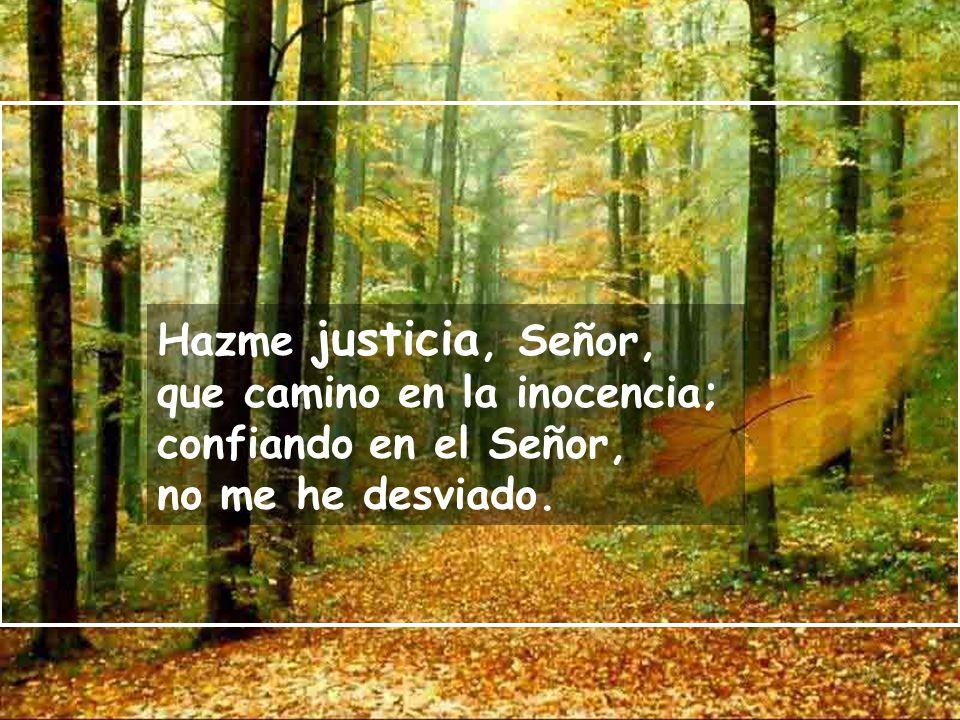 Hazme justicia, Señor, que camino en la inocencia; confiando en el Señor, no me he desviado.