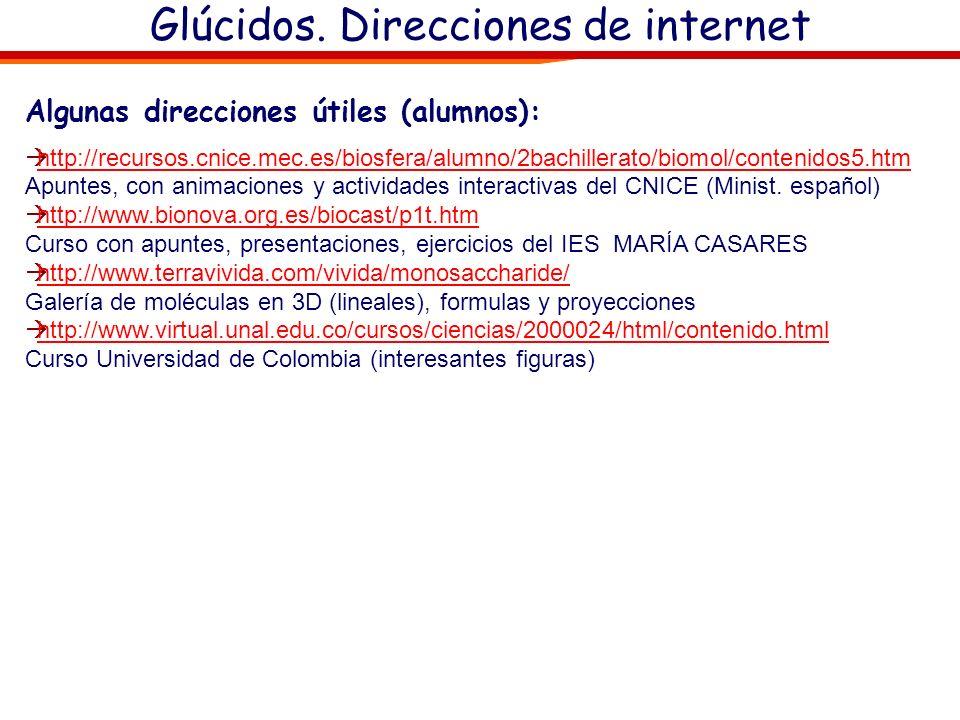 Glúcidos. Direcciones de internet