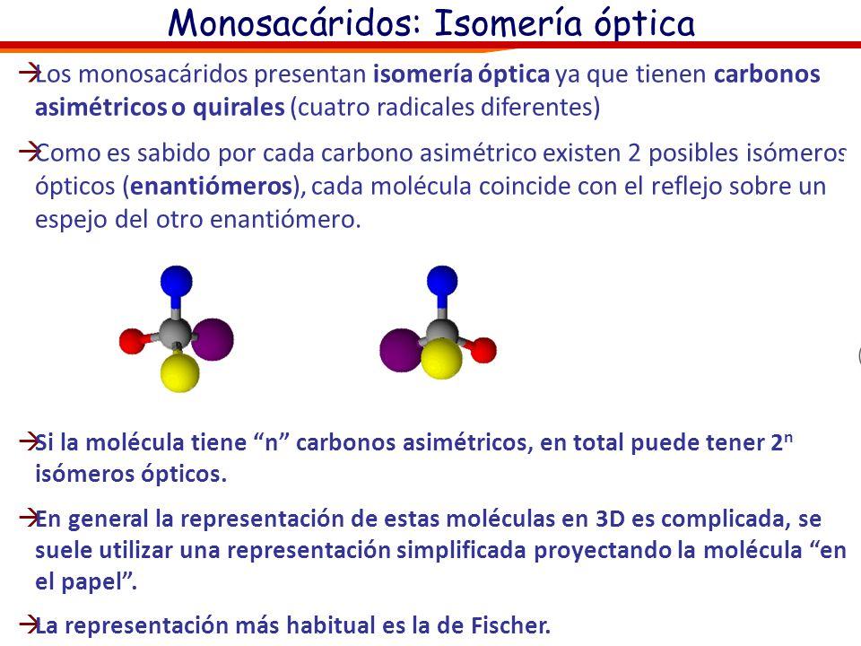 Monosacáridos: Isomería óptica