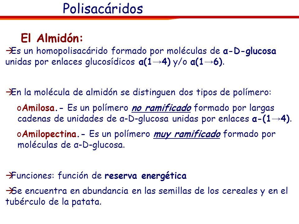 Polisacáridos El Almidón: