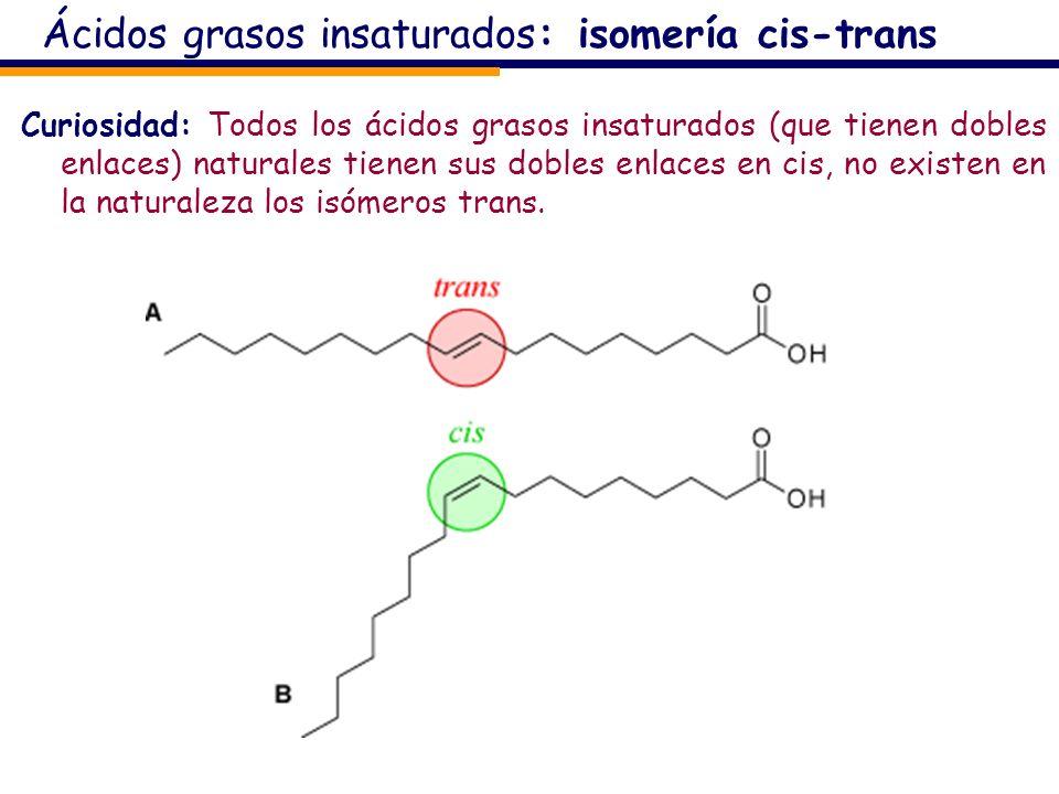 Ácidos grasos insaturados: isomería cis-trans