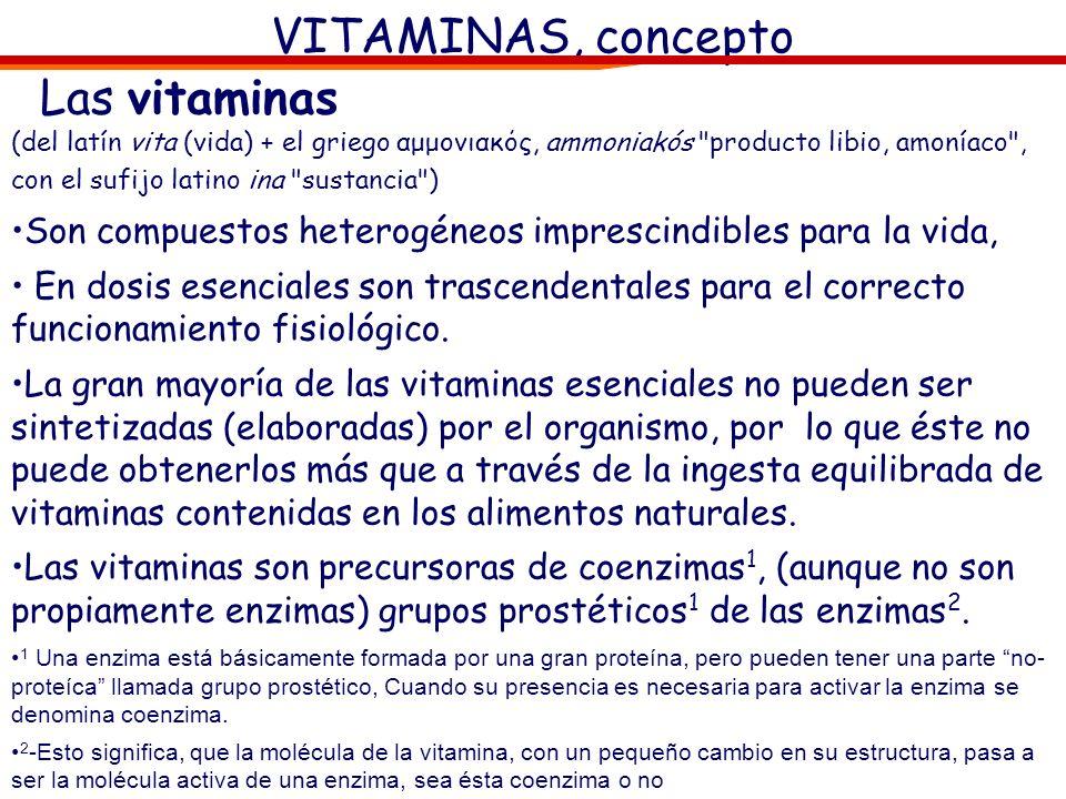 VITAMINAS, concepto Las vitaminas