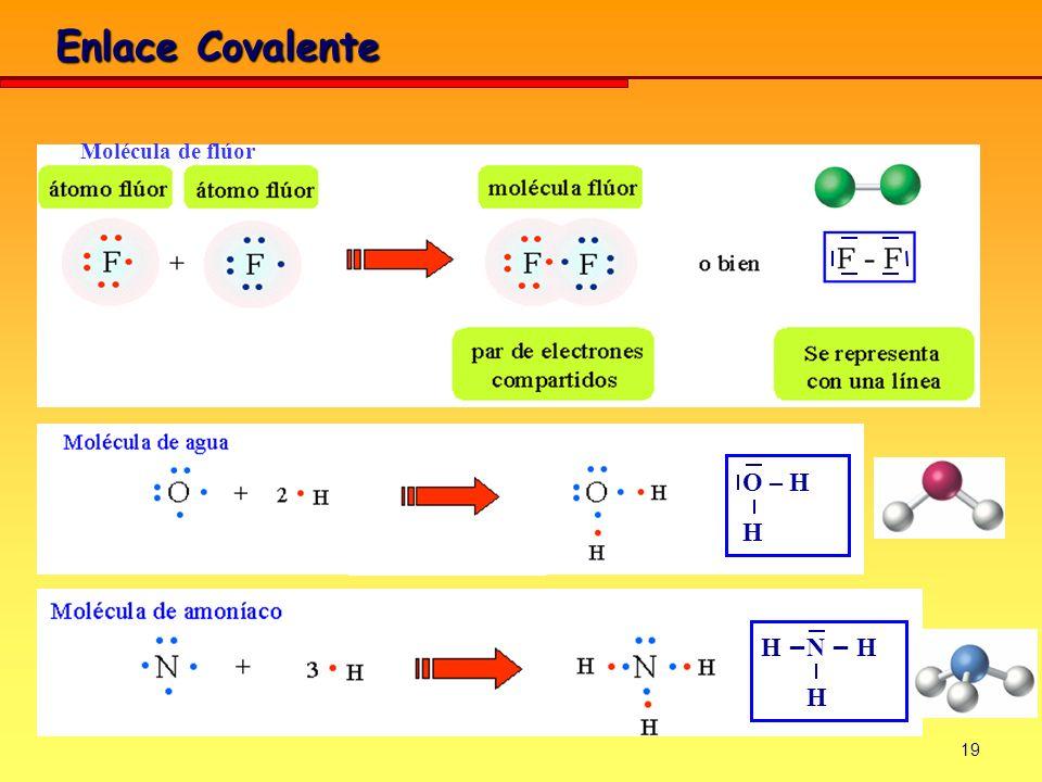 Enlace Covalente Molécula de flúor O – H H H –N – H H