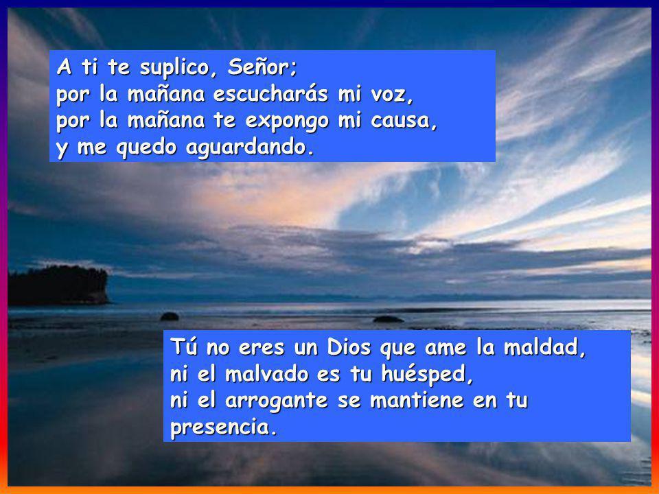 A ti te suplico, Señor; por la mañana escucharás mi voz, por la mañana te expongo mi causa, y me quedo aguardando.