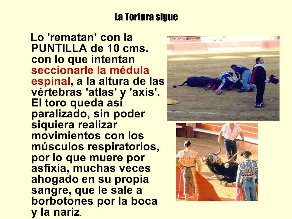 La Tortura sigue