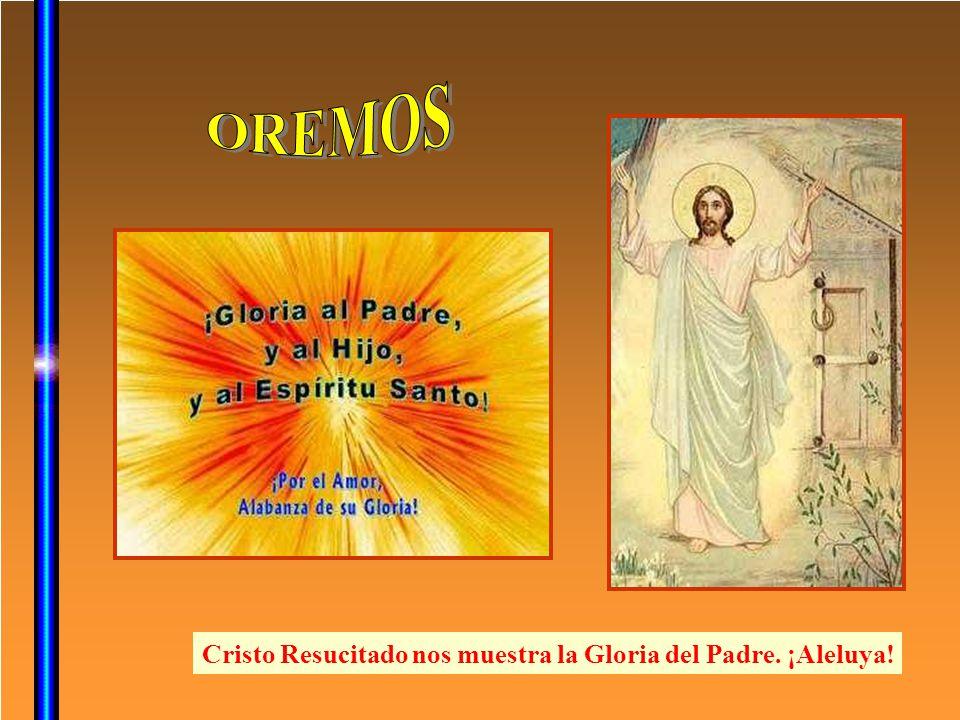 OREMOS Cristo Resucitado nos muestra la Gloria del Padre. ¡Aleluya!