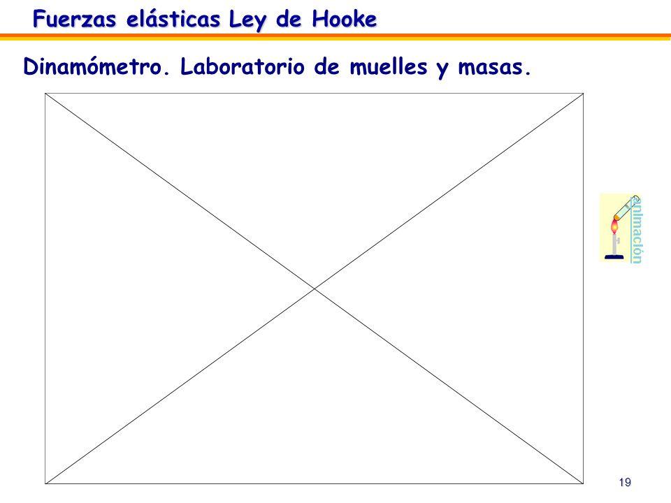 Fuerzas elásticas Ley de Hooke