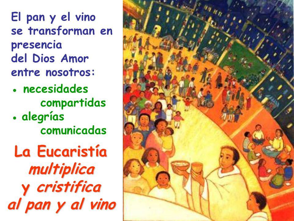 La Eucaristía multiplica y cristifica al pan y al vino