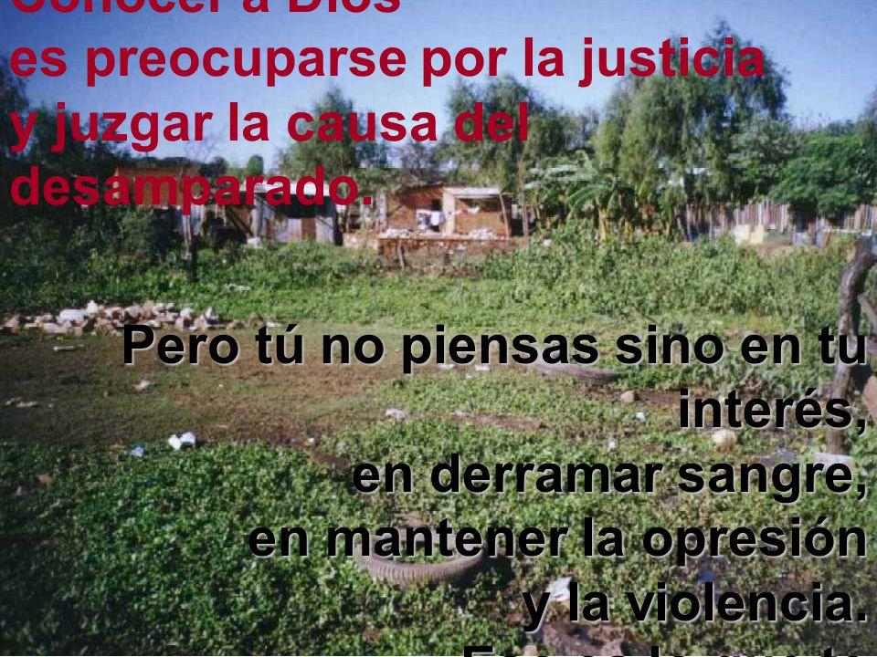 Conocer a Dios es preocuparse por la justicia y juzgar la causa del desamparado.