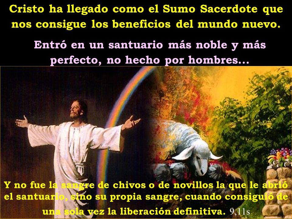 Cristo ha llegado como el Sumo Sacerdote que nos consigue los beneficios del mundo nuevo.