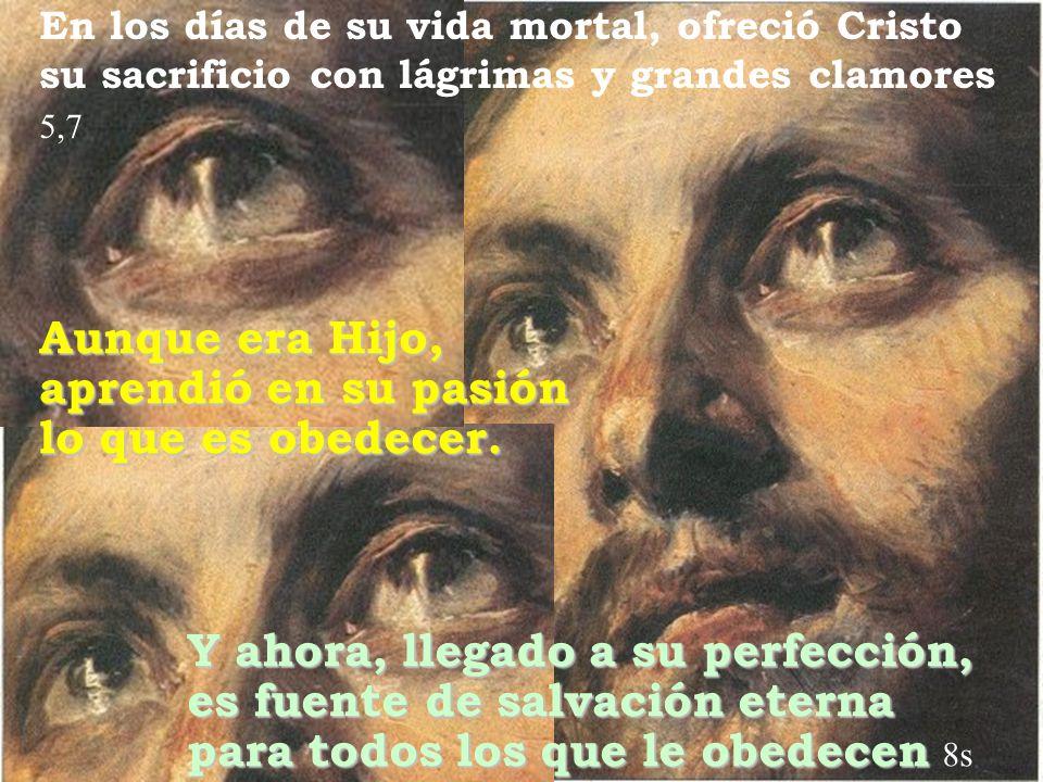 Y ahora, llegado a su perfección, es fuente de salvación eterna