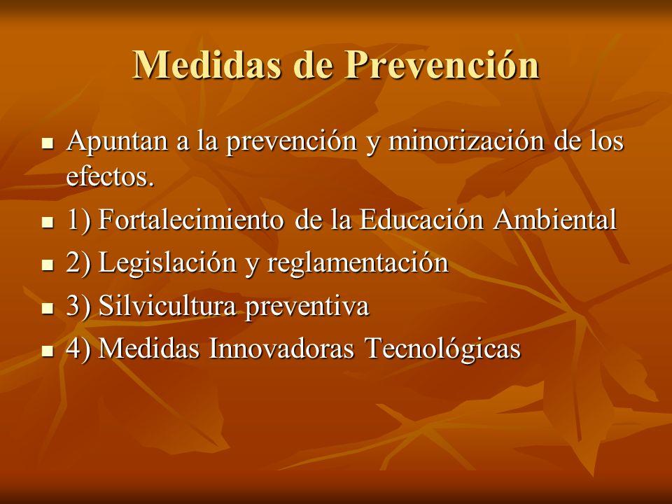 Medidas de Prevención Apuntan a la prevención y minorización de los efectos. 1) Fortalecimiento de la Educación Ambiental.
