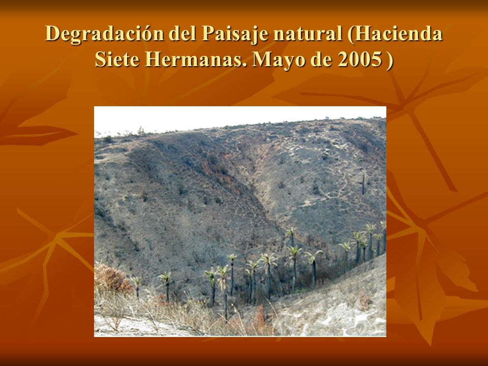 Degradación del Paisaje natural (Hacienda Siete Hermanas