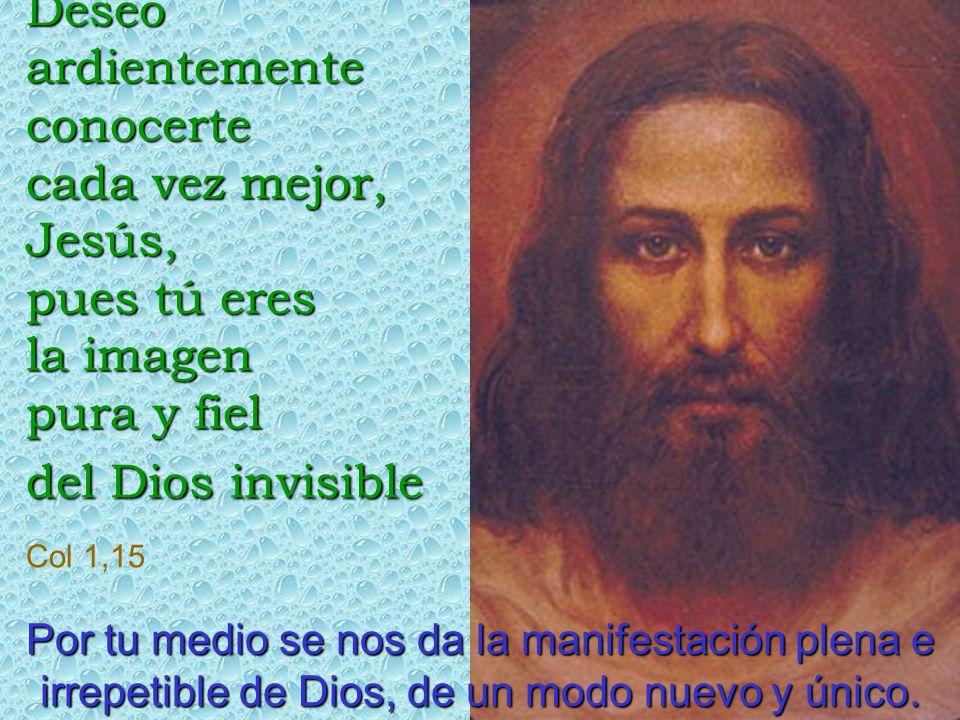Deseo ardientemente conocerte cada vez mejor, Jesús, pues tú eres la imagen pura y fiel del Dios invisible Col 1,15