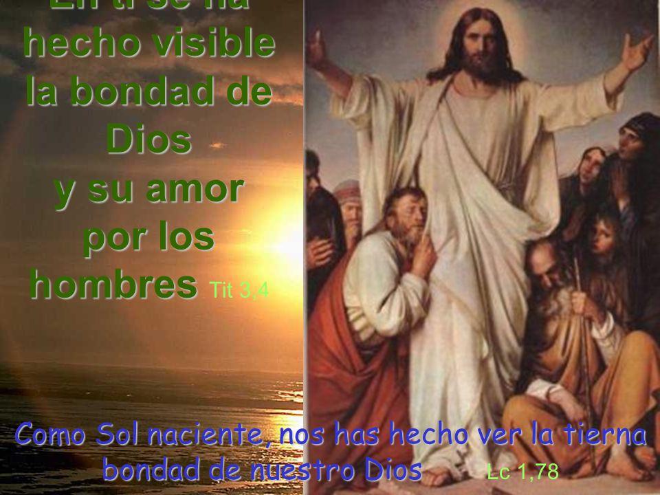 En ti se ha hecho visible la bondad de Dios y su amor por los hombres Tit 3,4