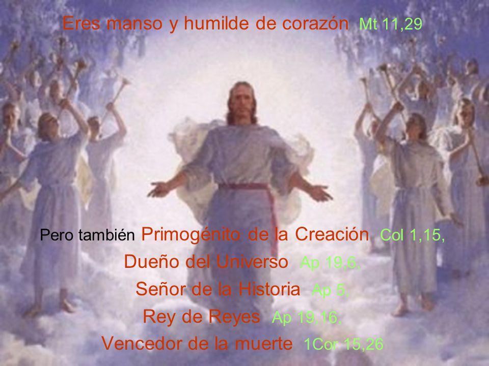 Eres manso y humilde de corazón Mt 11,29