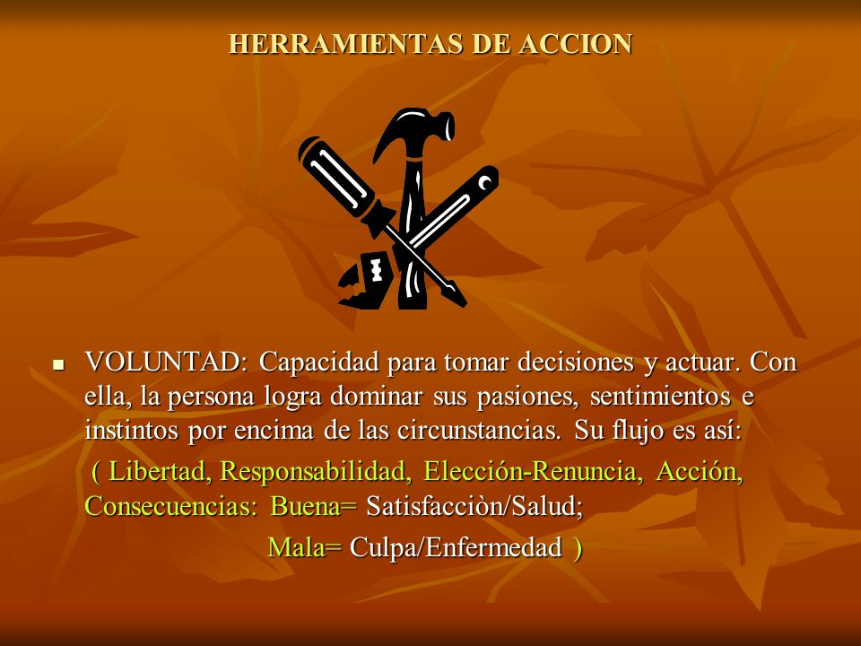 HERRAMIENTAS DE ACCION
