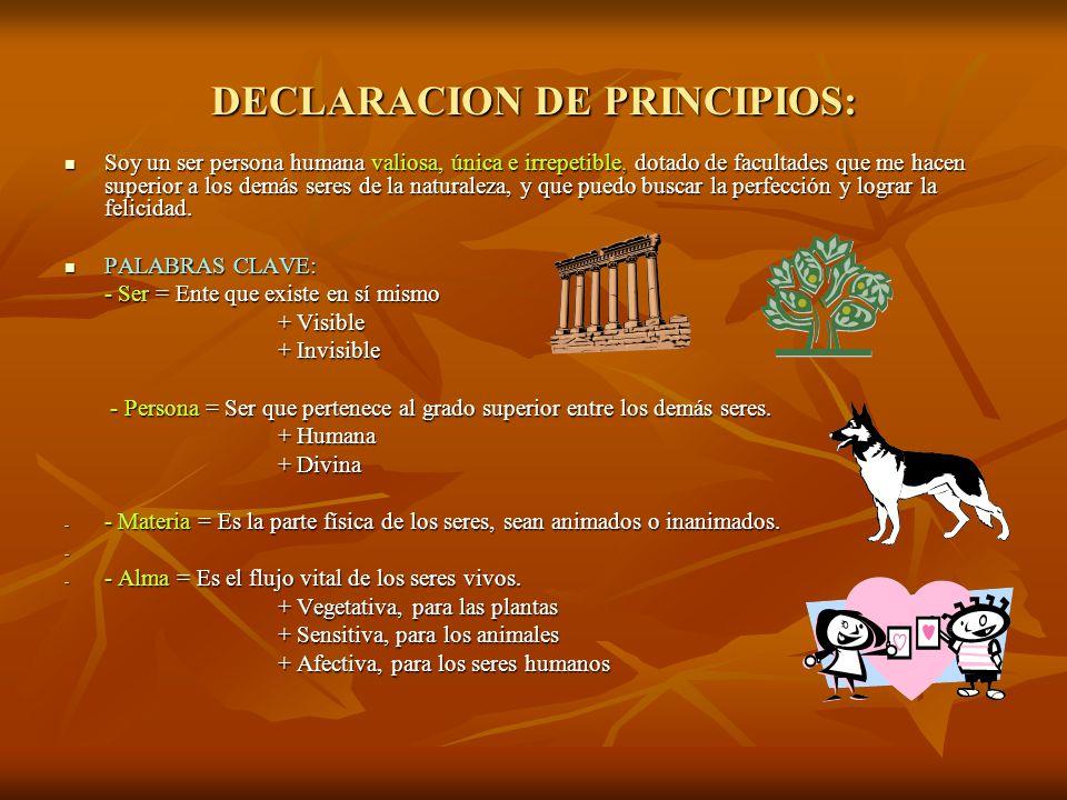 DECLARACION DE PRINCIPIOS: