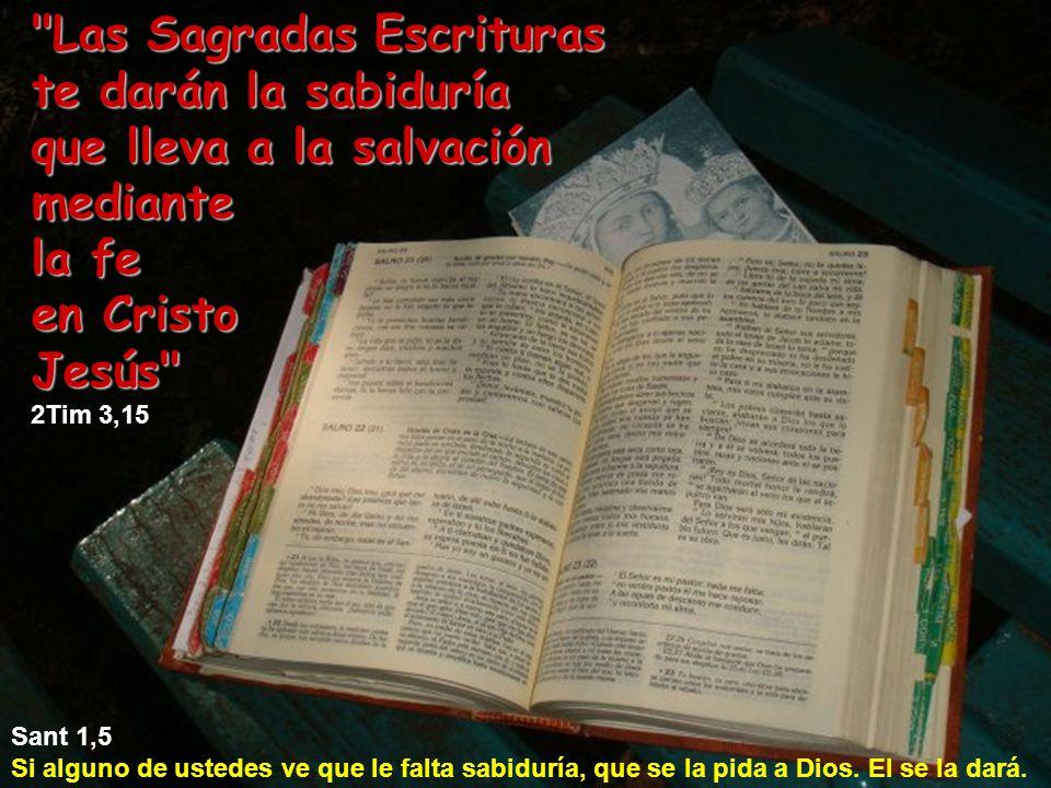Las Sagradas Escrituras te darán la sabiduría
