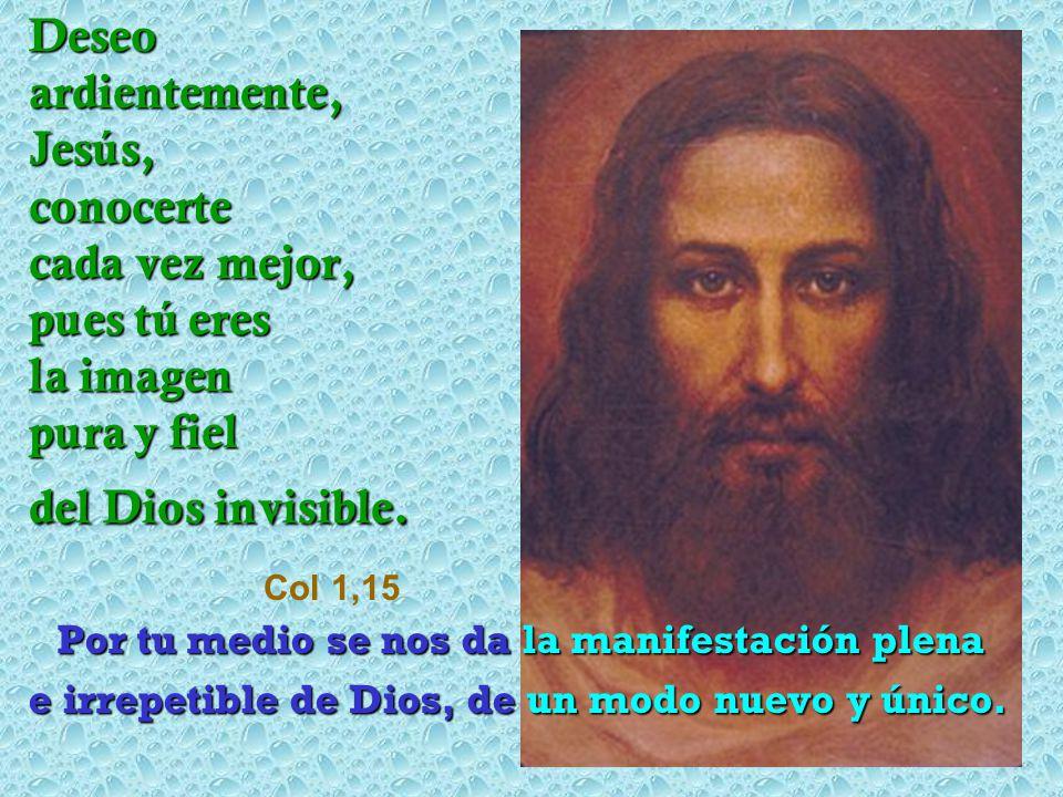 Deseo ardientemente, Jesús, conocerte cada vez mejor, pues tú eres la imagen pura y fiel del Dios invisible. Col 1,15
