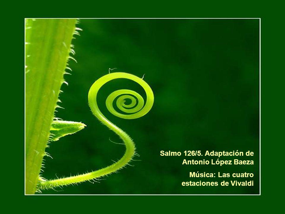 Salmo 126/5. Adaptación de Antonio López Baeza