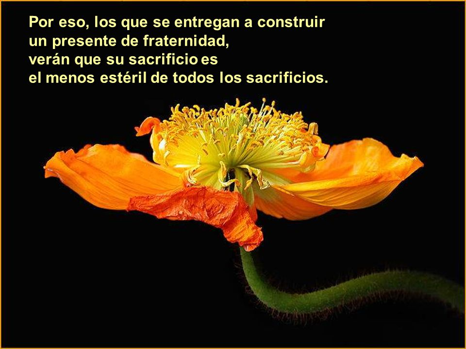 Por eso, los que se entregan a construir un presente de fraternidad, verán que su sacrificio es el menos estéril de todos los sacrificios.