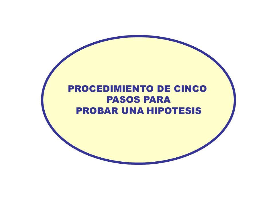 PROCEDIMIENTO DE CINCO