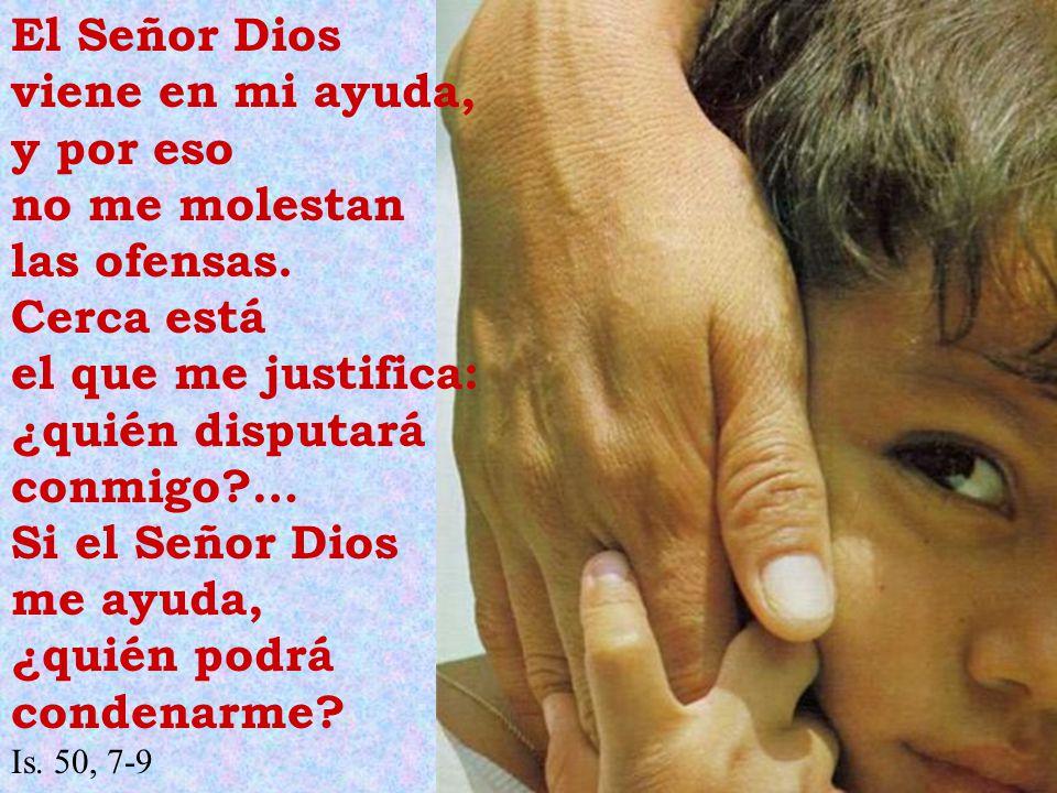 El Señor Dios viene en mi ayuda, y por eso no me molestan las ofensas.