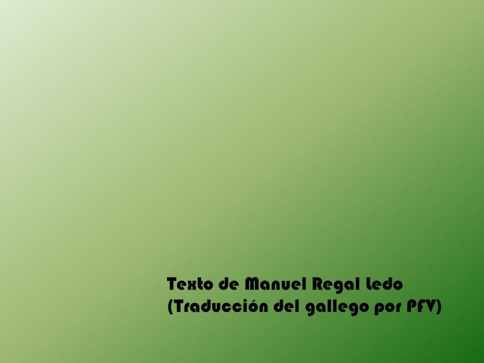 Texto de Manuel Regal Ledo