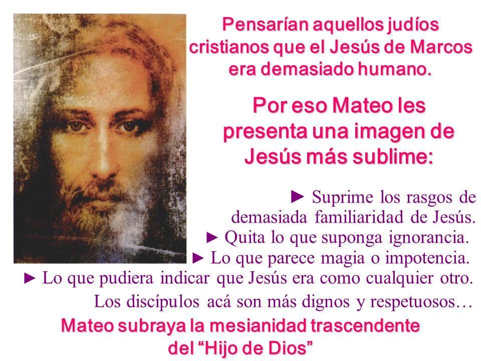 Por eso Mateo les presenta una imagen de Jesús más sublime: