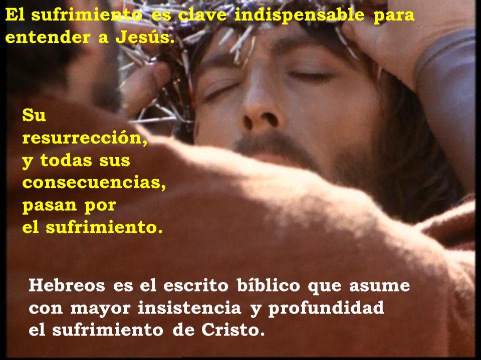 El sufrimiento es clave indispensable para entender a Jesús.