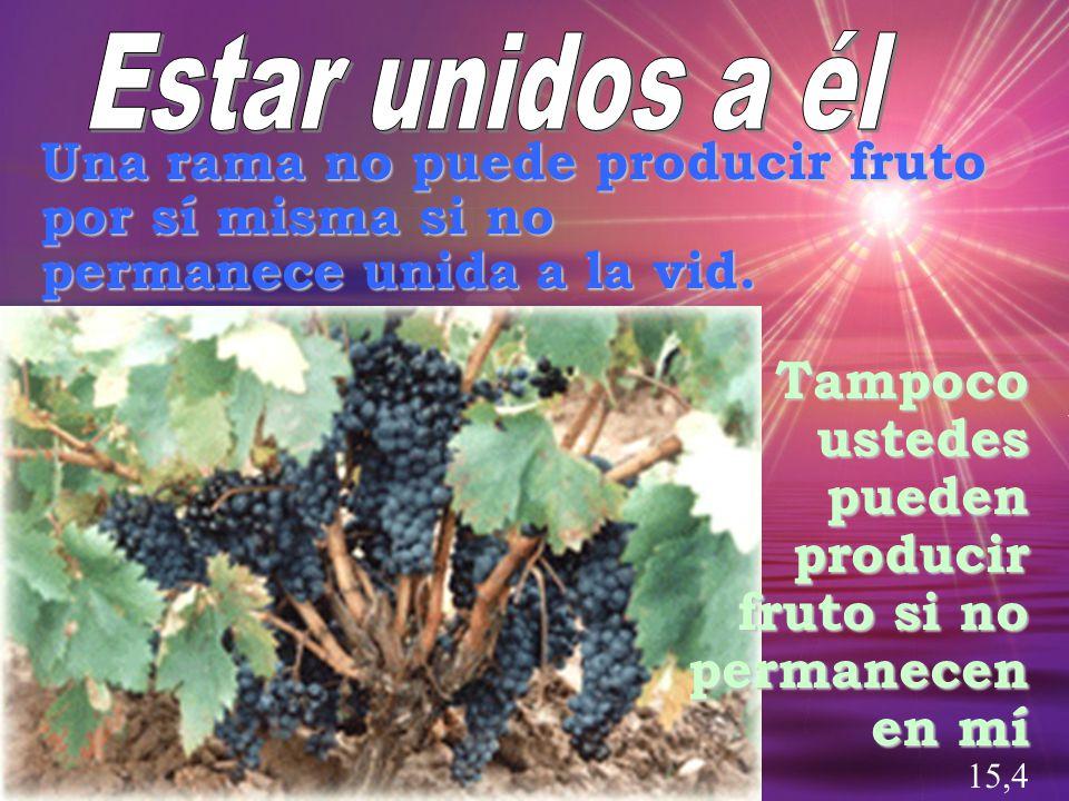 Estar unidos a él Una rama no puede producir fruto por sí misma si no