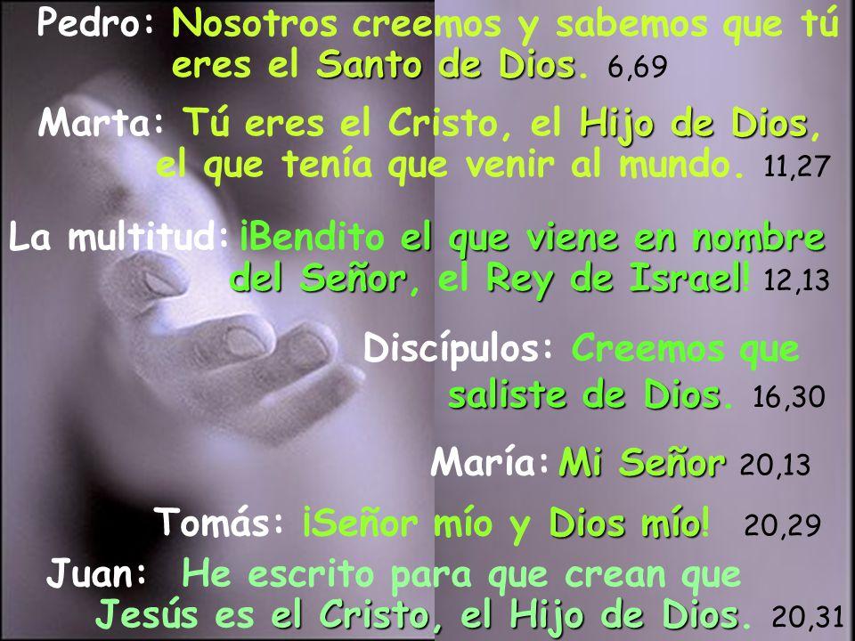 Pedro: Nosotros creemos y sabemos que tú eres el Santo de Dios. 6,69